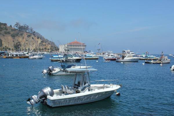 Catalina Island 103