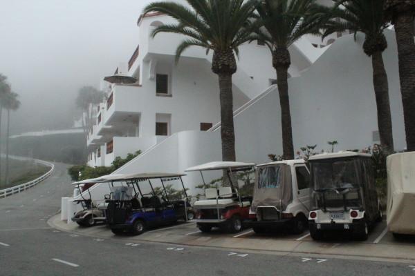 Catalina Island 418