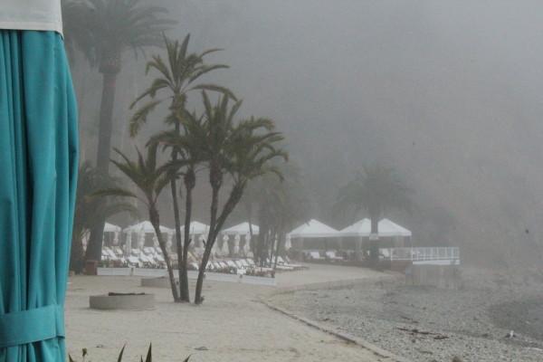 Catalina Island 435