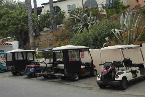 Catalina Island 563