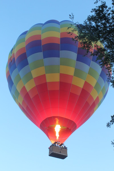 Temecula Balloon and Wine Fest 026
