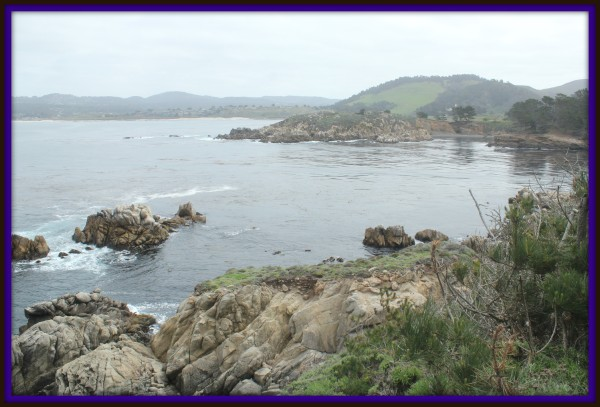point-lobos-reserve