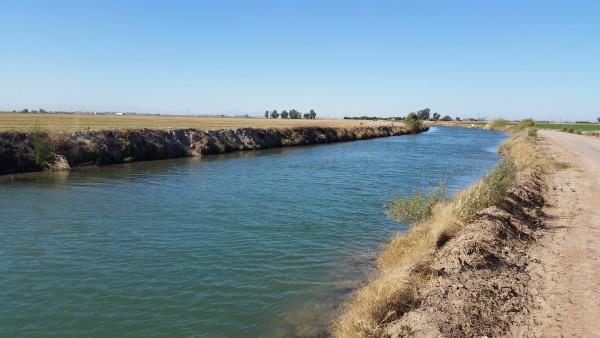 Rosita-Canal