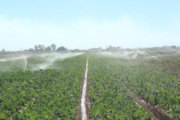 Farm-Water-Irrigation