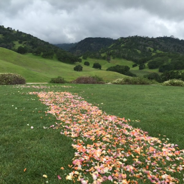 Wedding-Hill-Taber-Ranch