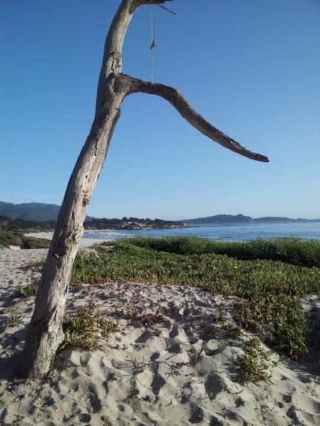Carmel-Beach