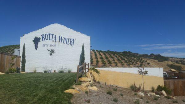 Rotta-Winery