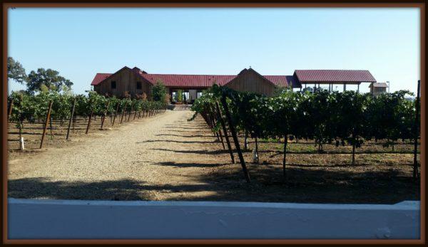 Oak-Farm-Vines