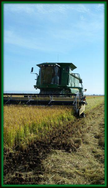 farm-combine
